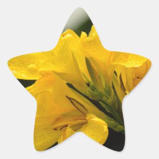 Gladiolas amarillo calcomanías forma de estrella