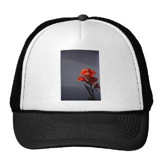 Gladioli Trucker Hat