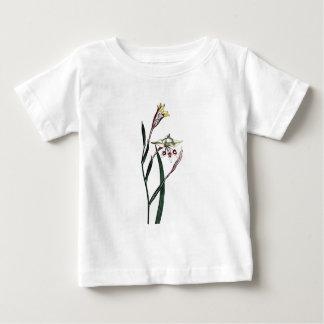 Gladiolus Angustus Tees