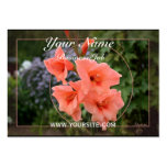 Gladiolus Business Cards