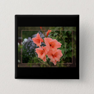 Gladiolus Button
