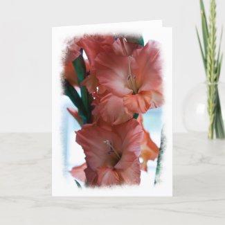 Gladiolus card