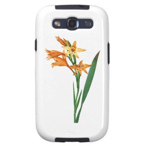 Gladiolus Cuspidatus by Pierre Joseph Redoute Samsung Galaxy SIII Covers