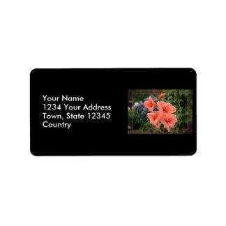 Gladiolus Label