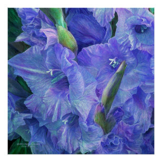 Gladiolus Moods - Lavender Art Poster/Print Poster