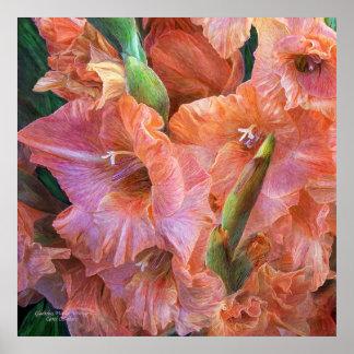 Gladiolus Moods - Peach Pink Art Poster/Print Poster