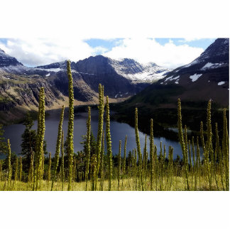 Glaicer National Park Hidden Lake Cutout