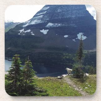 Glaicer National Park Hidden Lake Overlook Beverage Coaster