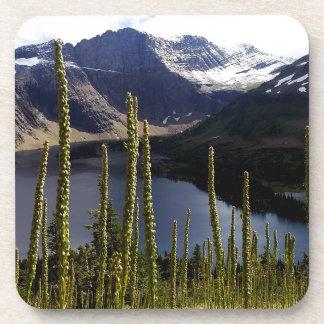 Glaicer National Park Hidden Lake Overlook Coaster