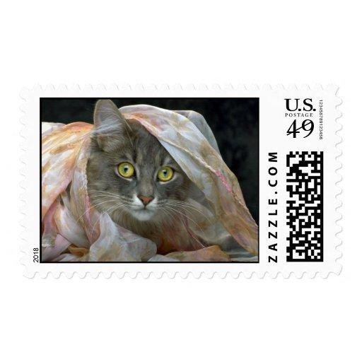 Glamor Puss Postage Stamp