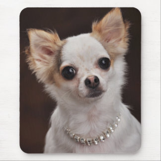 Glamour Chihuahua Diva Mouse Pad