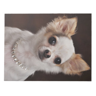 Glamour Chihuahua Diva Notepad