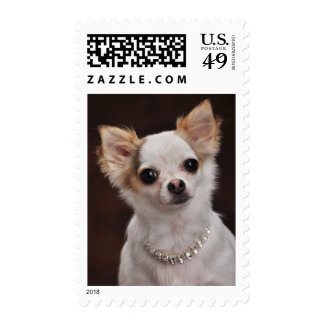 Glamour Chihuahua Diva Postage