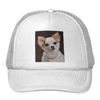 Glamour Chihuahua Diva Trucker Hat