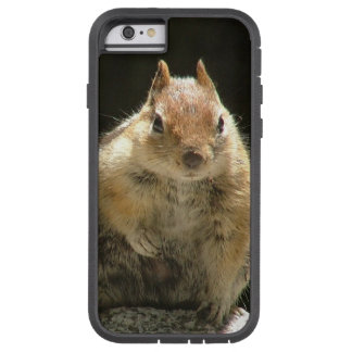 Glamourous squirrel tough xtreme iPhone 6 case