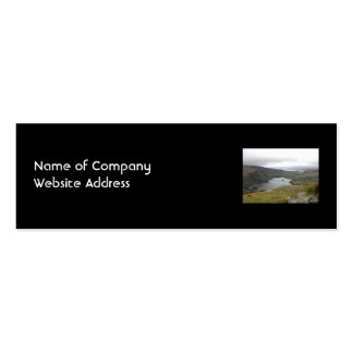 Glanmore Lake from Healy Pass Ireland. Double-Sided Mini Business Cards (Pack Of 20)