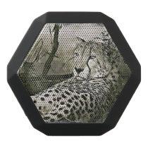 Glaring Cheetah  Digital Art Speaker