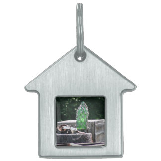 Glass fishing floats on wooden boxes scene pet ID tag