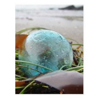 Glass Float in kelp Postcard