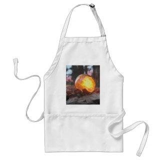 Glass float sunset filled adult apron