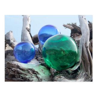 Glass Floats on Driftwood Postcard