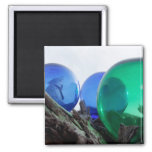 Glass floats on gray driftwood 2 inch square magnet