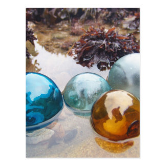Glass Floats on water Postcard