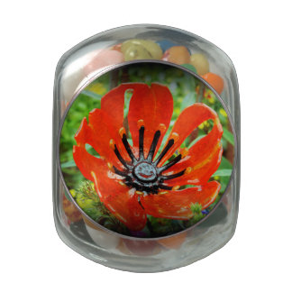 Glass Flower Jelly Belly Candy Jars