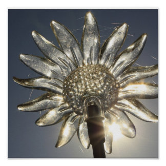 Glass Flower Poster