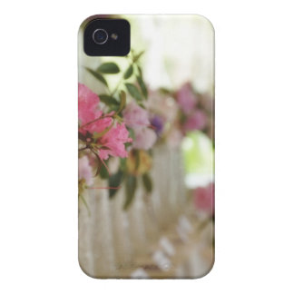 Glass flower vases with spring flowers iPhone 4 covers