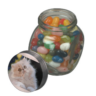 Glass pot in layout61, cats glass candy jar