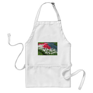 Glass sphere reflecting red white tulips and blue adult apron