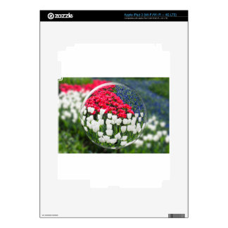 Glass sphere reflecting red white tulips and blue decals for iPad 3