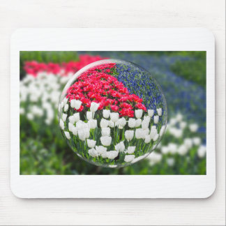 Glass sphere reflecting red white tulips and blue mouse pad