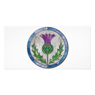 Glass Thistle Photo Card