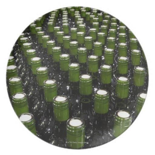 Glass wine bottles in a wine bottling factory. plate