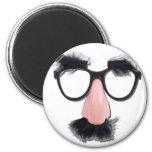 GlassesMustacheEyebrows090411 Fridge Magnets