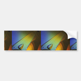 Glassware and spectral shadow car bumper sticker