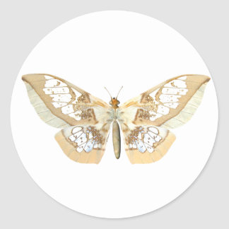 GlassWing Butterfly Classic Round Sticker