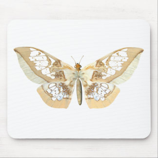 GlassWing Butterfly Mouse Pad