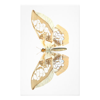 GlassWing Butterfly Personalized Stationery