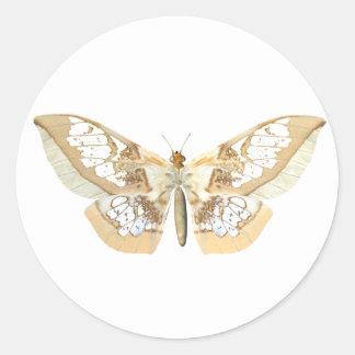 GlassWing Butterfly Stickers