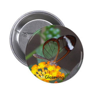 Glasswing Pins