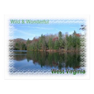 Glassy Appalachian Lake Postcard