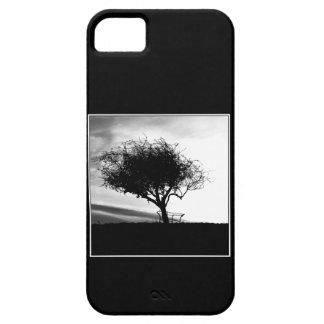 Glastonbury Hawthorn. Tree. Black and White. iPhone 5 Covers