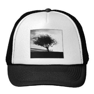 Glastonbury Hawthorn. Tree. Black and White. Trucker Hat