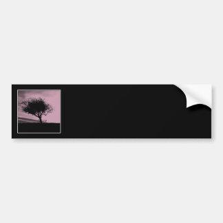 Glastonbury Hawthorn. Tree on Hill. Pink, Black. Bumper Sticker
