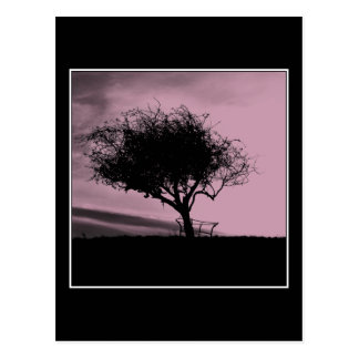 Glastonbury Hawthorn. Tree on Hill. Pink, Black. Postcard