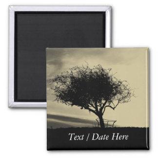 Glastonbury Hawthorn. Tree on Hill. Sepia Color. Magnet