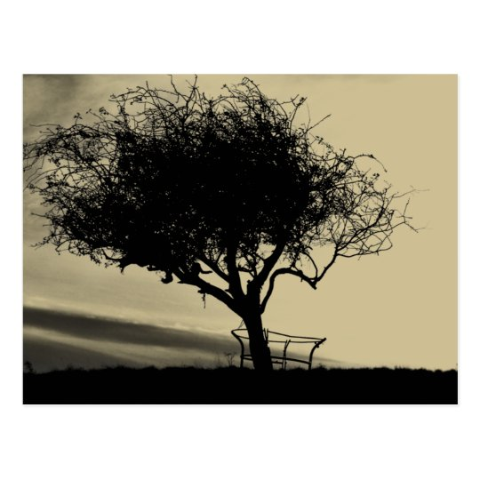 Glastonbury Hawthorn. Tree on Hill. Sepia Color. Postcard